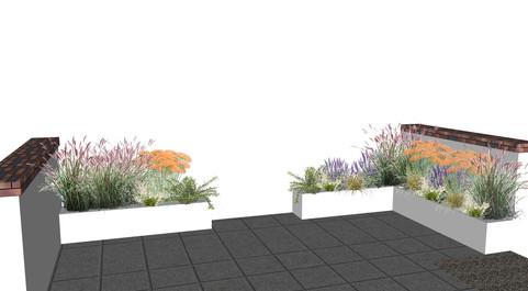Cheltenham Courtyard - planting elevatio