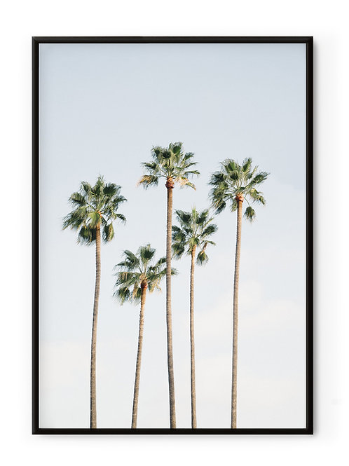 David & David Studio Regal Palm Trees Framed Print