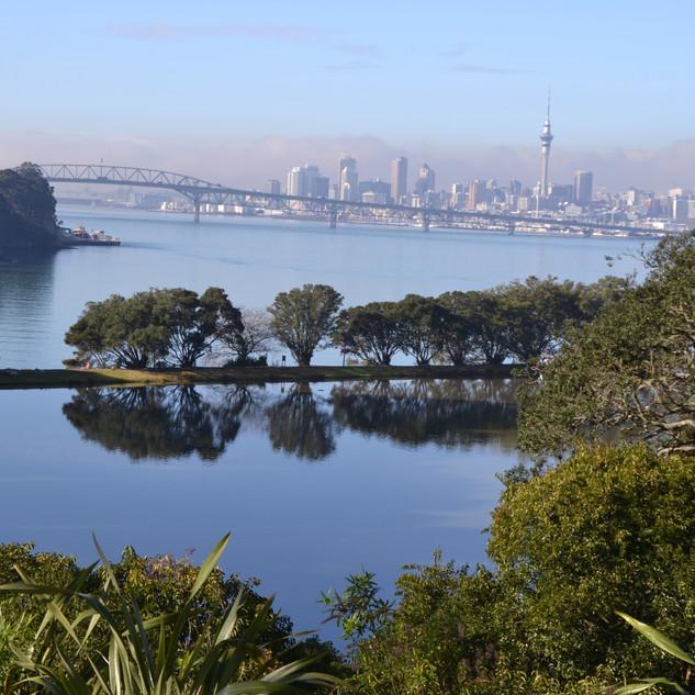 Aucklandfog_chelsea.jpg