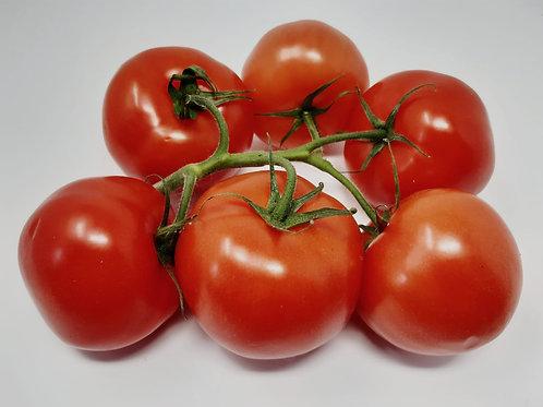 Large Vine Tomatoes x6