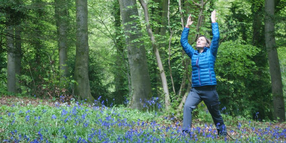 Mindfulness Walk, Yoga & Meditation in Nature