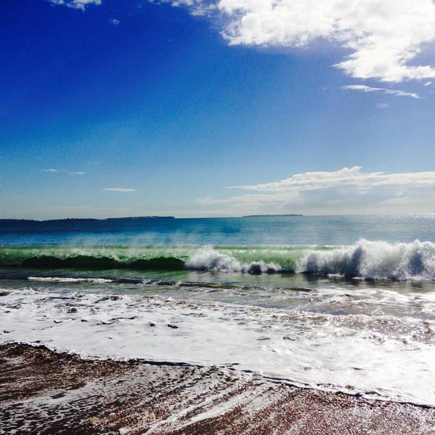 Beachlucy2.jpeg