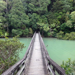 bridge to bushwalk - 1.jpg