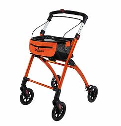 Jaguar-Orange-Main-772x800.webp