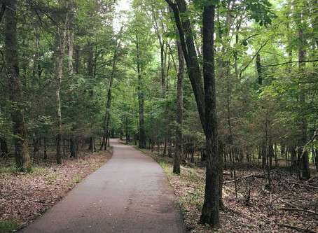 Hiking around Nashville: Long Hunter State Park