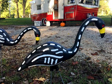 Flamingo Skeletons!