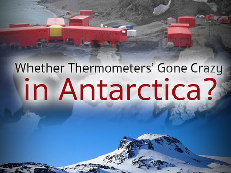 Whether Thermometers' Gone Crazy in Antartica?