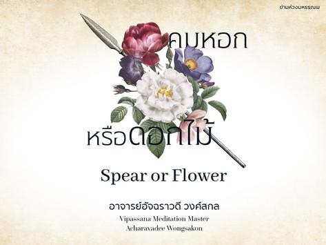 Spear or Flower