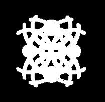 icone blanc.png