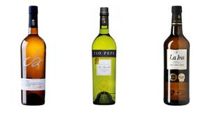 Mejores vinos finos Asprodibe