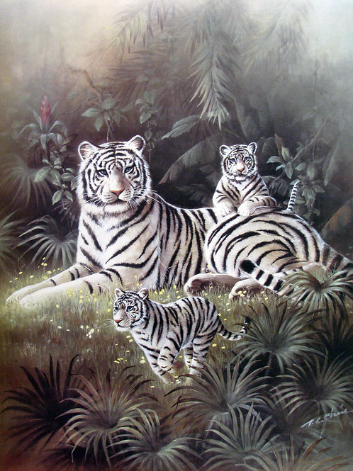 White Tiger with Cubs