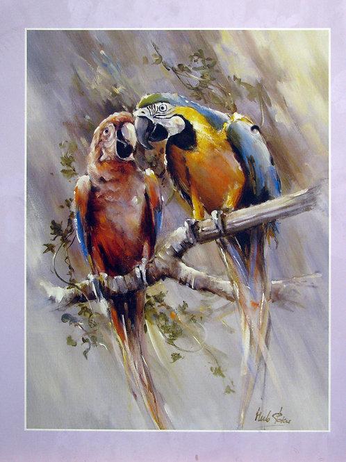Cute Parakeet Couple