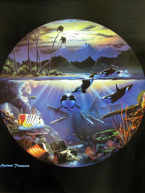 Orca Wonderland