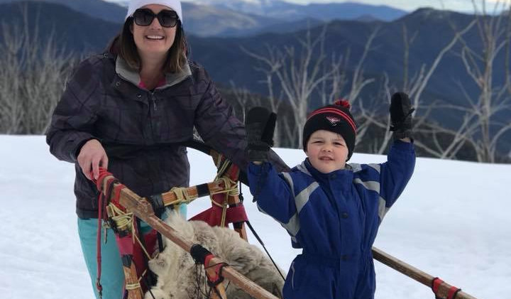 mount buller dog sled
