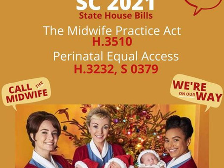 SC Licensed Midwives Support Bills to Improve Access to Birth Options