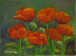 Pretty Poppies - 12 x 16