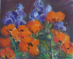 Poppies and Iris - 16 x 20