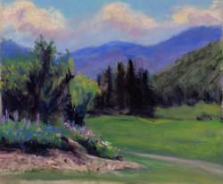 Golf Course Garden - 11 x 14
