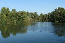 Lac des Bouzigues.JPG