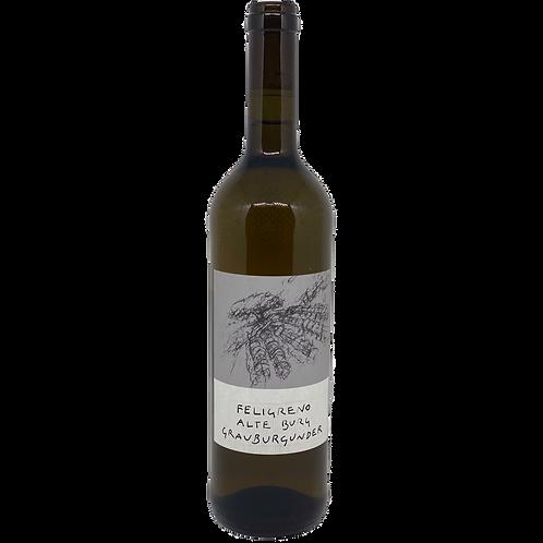 Hessische Bergstraße 2019 Bio Grauburgunder trocken Feligreno Bergsträßer Wein