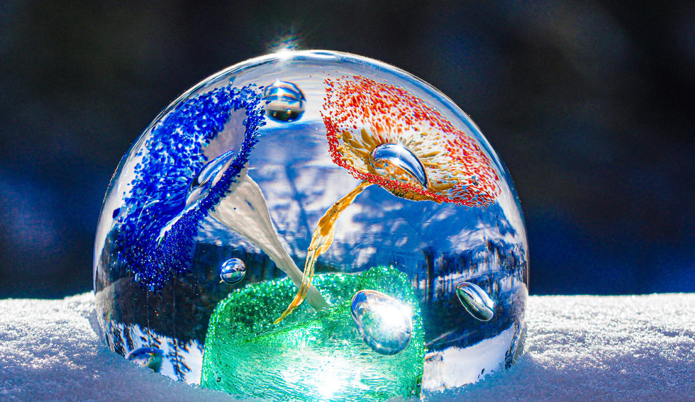 19-02_Glass-Glass i snø