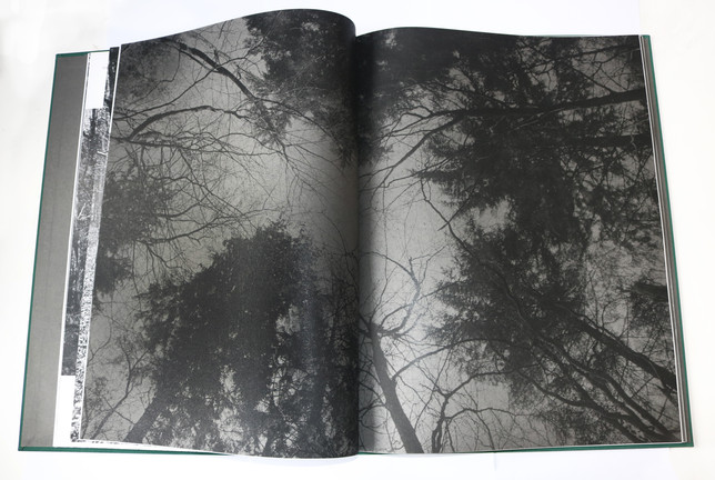 'Witch Hunt' book, printed by Abbey Bookbinding
