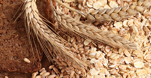 Rye-Bread-Article-Image-1.png