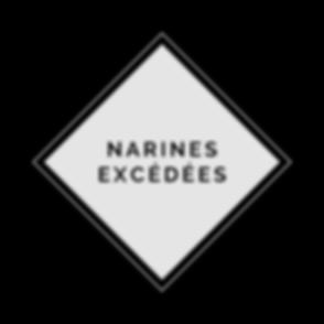 narines_excedees.png