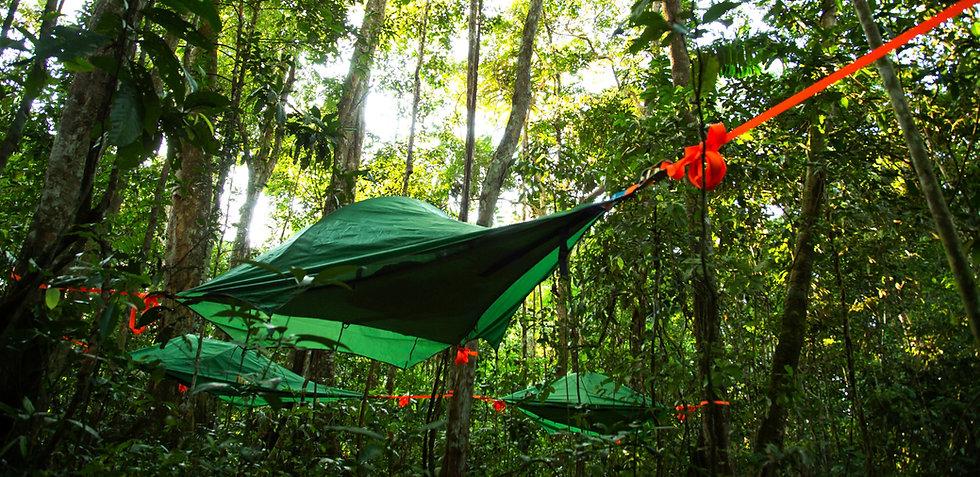 Madidi National Park - Treetents - camping