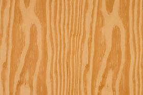 Southern Yellow Pine.jpg