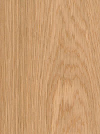 European Oak.jpg