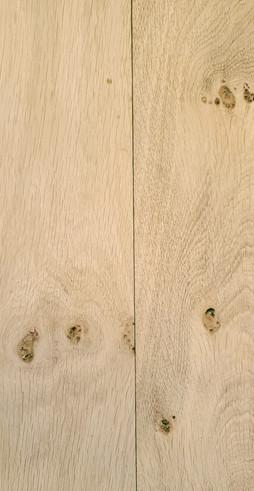 European White Oak.jpg
