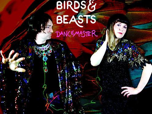 Dancemaster - single download