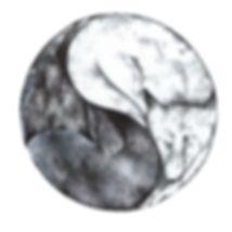 Foxes ying yang.jpg