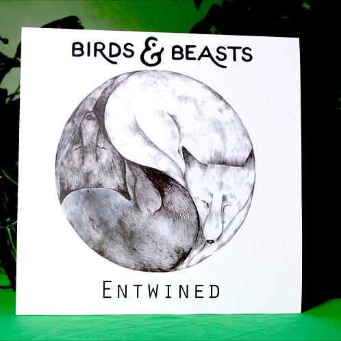 """Entwined - 12"""" vinyl album"""