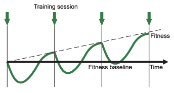 Why are rest days important in your training plan?