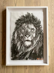 Bambo Sibiya | Lion