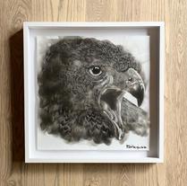 Bambo Sibiya | Eagle
