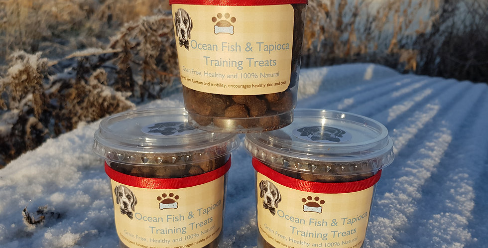 Ocean Fish & Tapioca Treat Pots