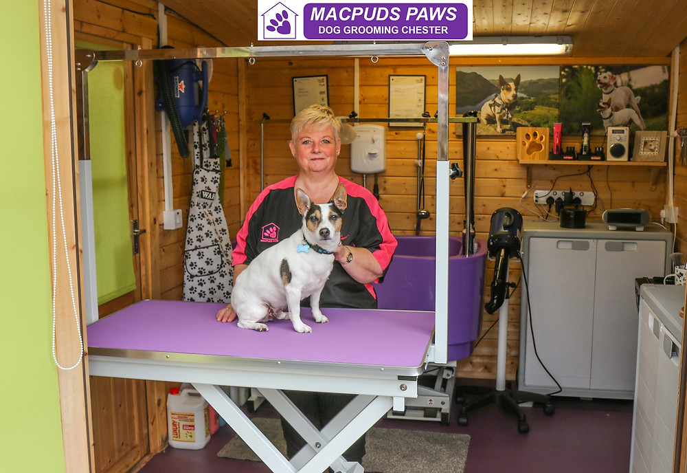 MacPuds Paws Dog Grooming Chester