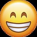kisspng-emoji-happiness-emoticon-smiley-