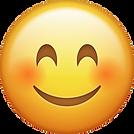 kisspng-emoji-emoticon-smiley-computer-i