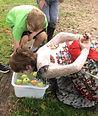 bobbing for apples.jpg