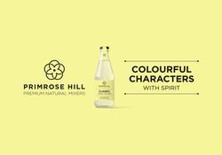 Primrose Hill Mixers