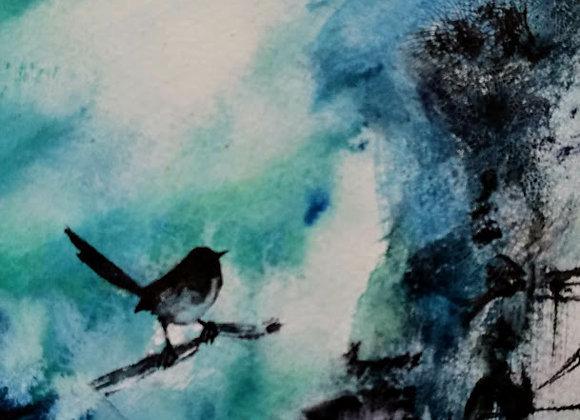 Ciel d'oiseau