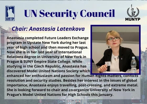 UN Security Council_2