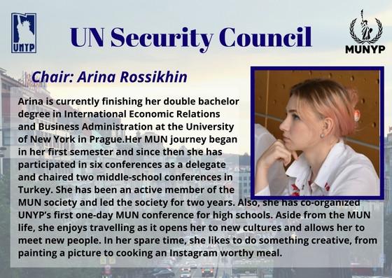 UN Security Council_1