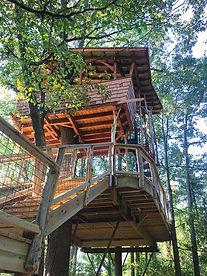 JuneBug_Asheville_TreeHouse3web.jpg