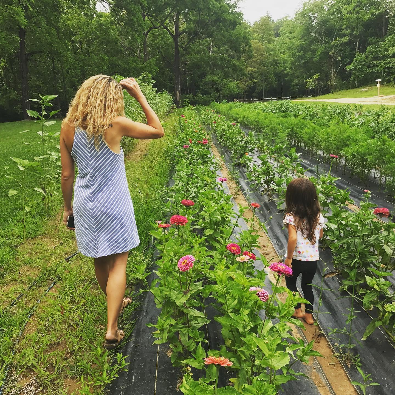 JuneBug_Asheville_Farm1