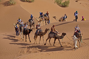 Morocco Expedition